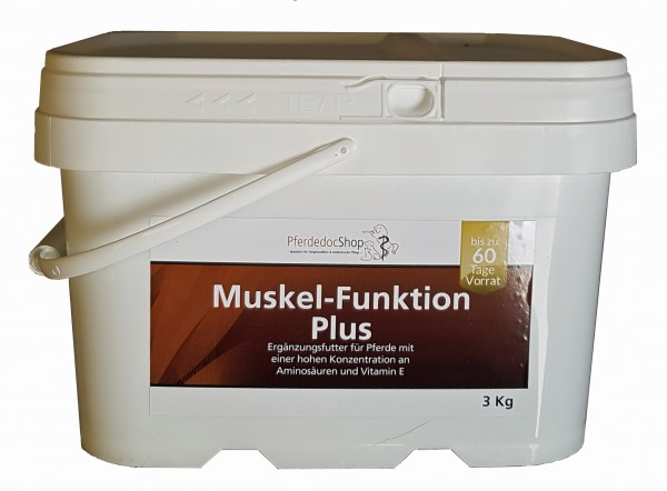 Muskel-Funktion Plus